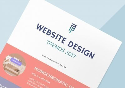 Website Trends 2017 Infographic